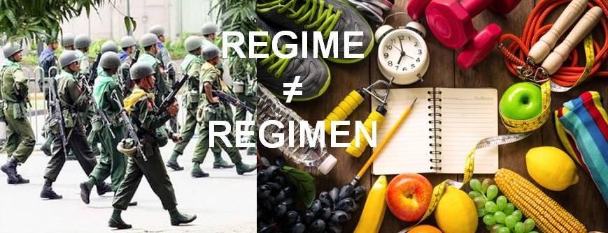My Current Peeve: Regime vs Regimen